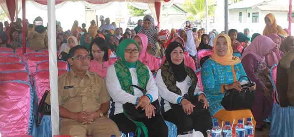 Wakil Ketua Komisi IX DPR RI Hj. Ermalena didampingi Sekda KSB Abdul Azis dan Direktur Pemberdayaan Ekonomi Keluarga BKKBN Pusat, Dra. Chamnah Wahyuni.