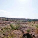 Hamparan lahan kering di Desa Sambik Elen, Kecamatan Bayan, Lombok Utara yang tidak bisa digarap untuk pertanian akibat krisis air irigasi. (Suara NTB/ars)
