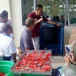 Tim ahli dari LIPI memperagakan alat pengering cabai dihadapan petani cabai di Kecamatan Jonggat, beberapa waktu lalu. (Suara NTB/kir)